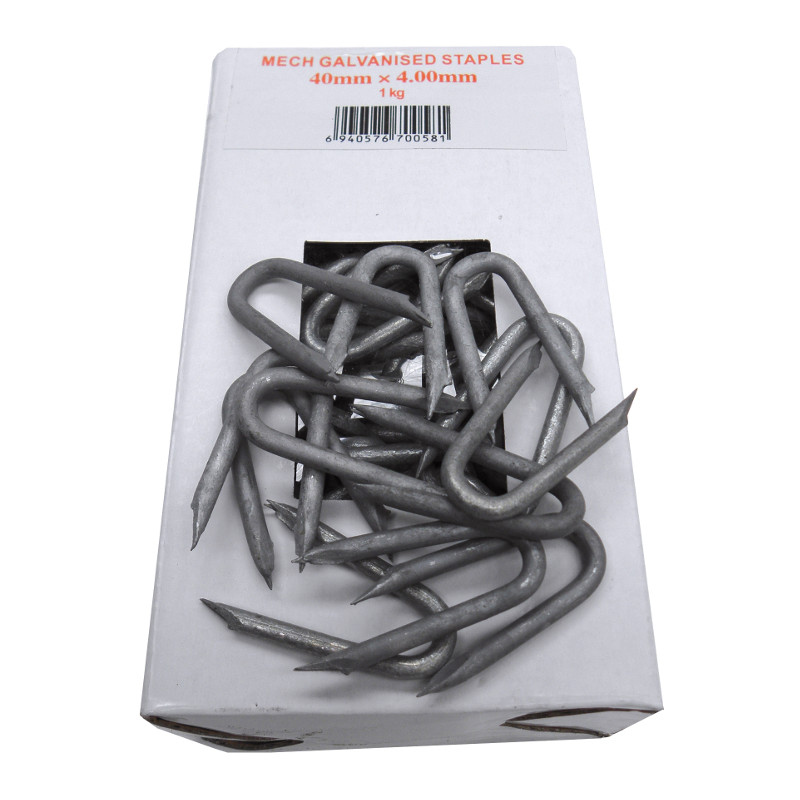 Galvanised Staples 1kg